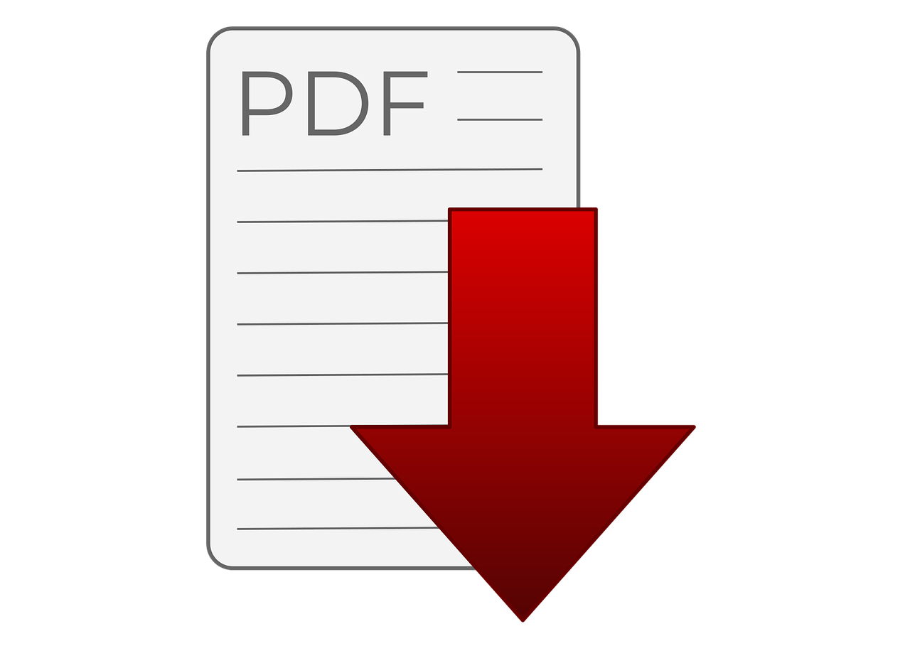 BWL online PDF zum Lernen finden